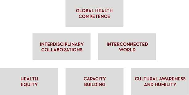 Global Health Work Group Principles
