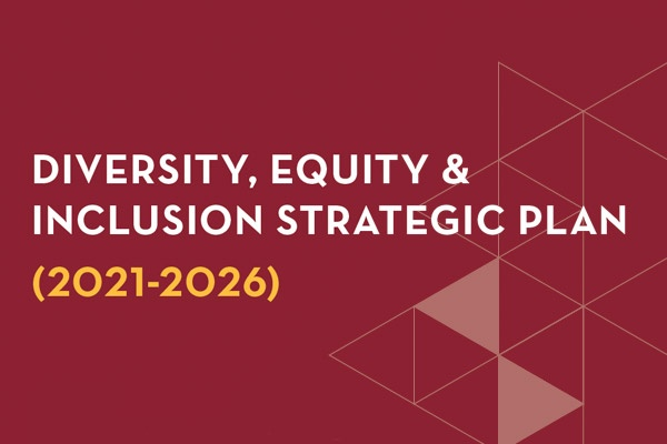 Diversity, Equity & Inclusion Strategic Plan Cover