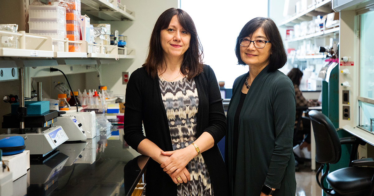 Irina Stepanov and Dorothy Hatsukami standing inside a research lab.